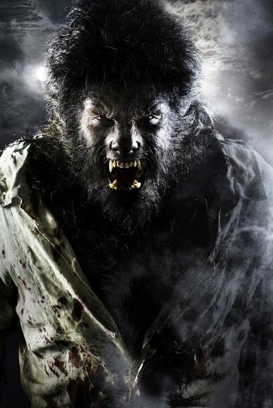 thewolfman1